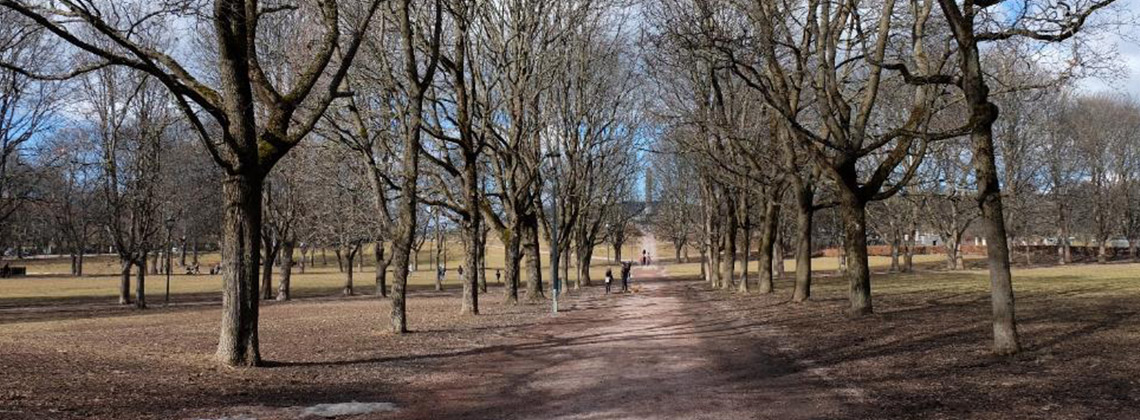 Vigeland Parkı oslo