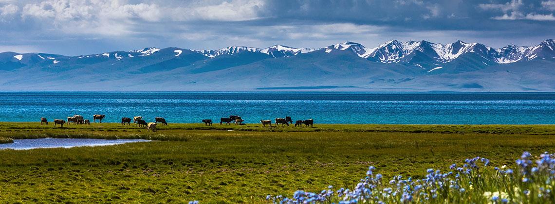 Kırgızistan