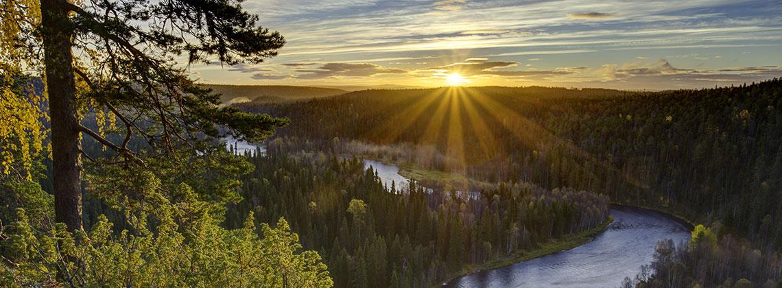 Oulanka Ulusal Parkı - Finlandiya