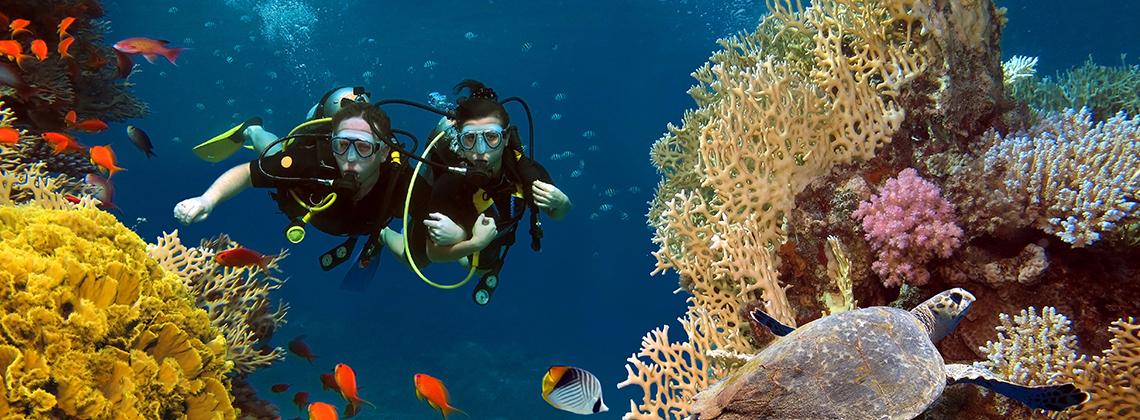 turkuaz sularıyla Maldivler