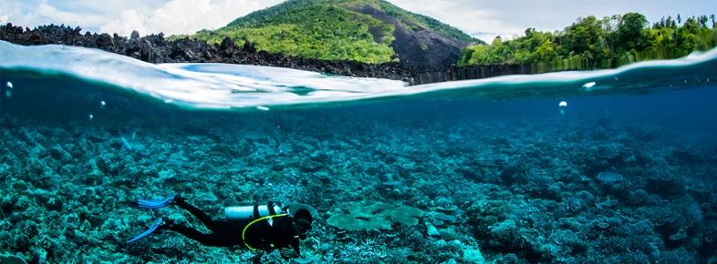 Su Altı Dünyası Tutkunları İçin Dünya Üzerindeki En Güzel Dalış Noktaları