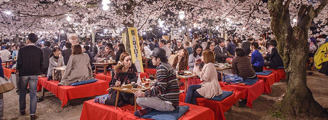 Bahar aylarında Japonya bir başka güzel!