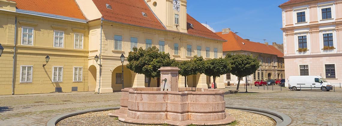 Slovenya Ulusal Müzesi